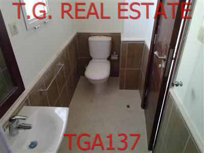 TGA137-398636979