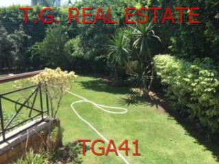 TGA41