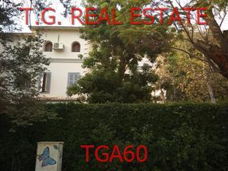 TGA60